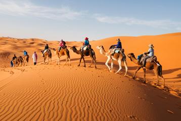 morocco_groups